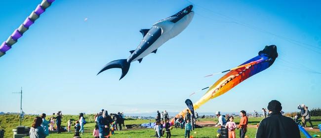 Puketāpapa Manu Aute Kite Day 2021