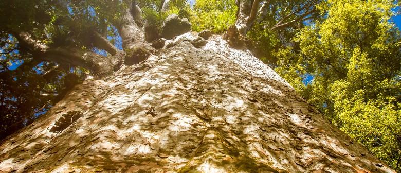 New Zealand's Biological Heritage National Science Challenge