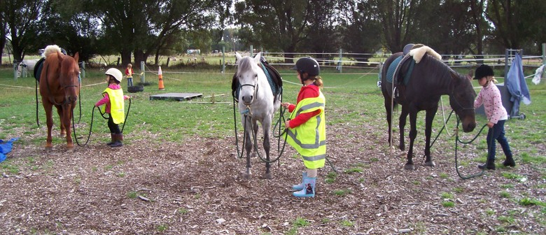 Wellness in Winter with The Horse - School Holiday Programme