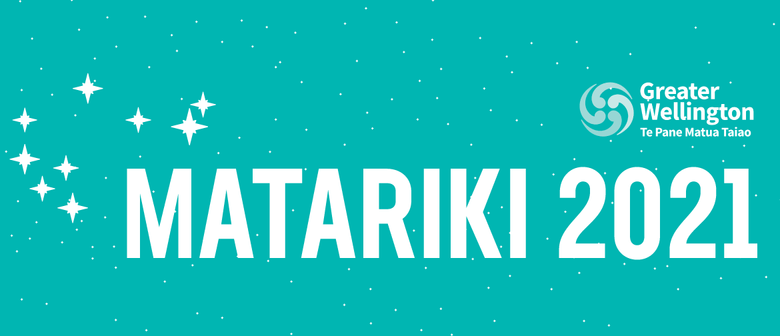 Matariki - Embracing a New Holiday for all New Zealanders