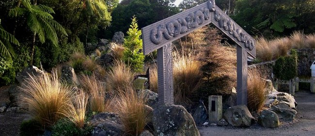 Growing New Zealand Native Plants In Your Garden: CANCELLED