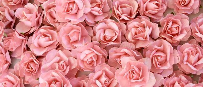 Spring Blossom Challenge