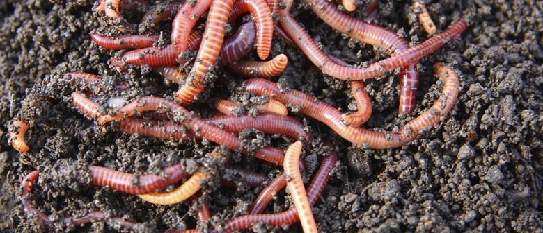 Intro to Worm Farming