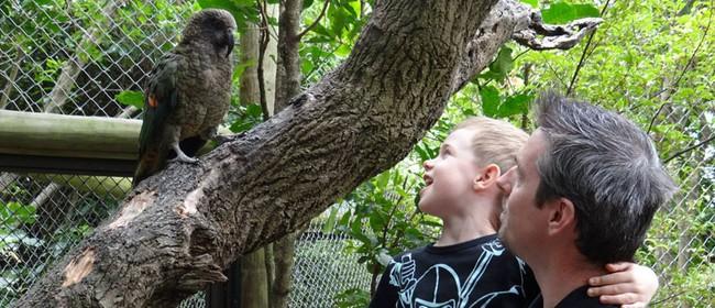 July School Holidays at Ngā Manu Nature Reserve