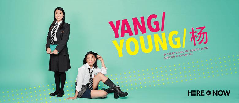 Yang/Young/杨