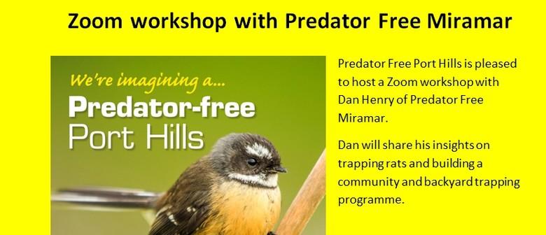Zoom workshop with Predator Free Miramar