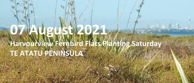 Harbourview Community Native Planting for Fernbird Flats
