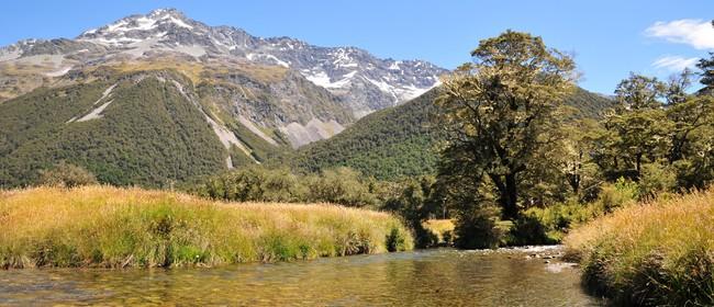 The Great Southern Alps Miler - Beardies Beat