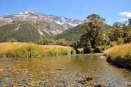 Image for event: The Great Southern Alps Miler - Beardies Beat