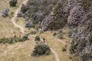 Image for event: The James Ground Effect MTB Epic