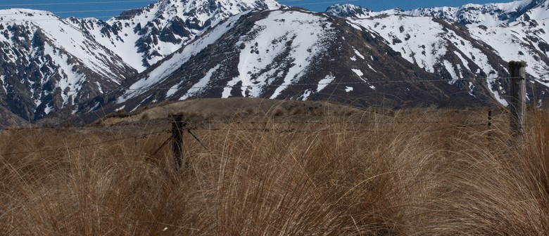 The James Homestead Half - High Country Run