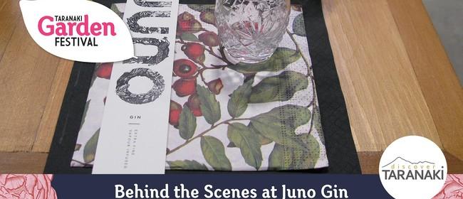 Behind the Scenes at Juno Gin