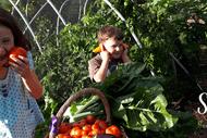 Foodscapes Open Garden Trail