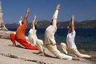 Image for event: Yoga Basics
