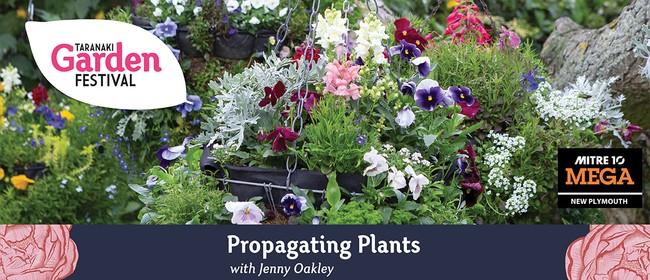 Propagating Plants
