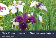 New Directions with Sunny Perennials