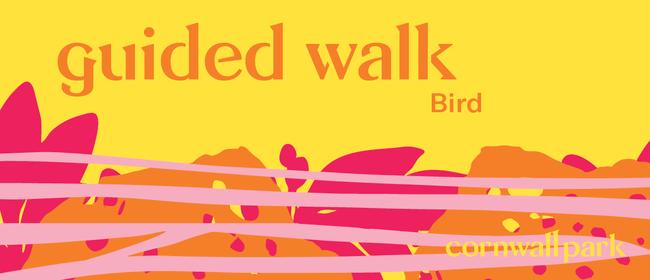 Guided Walk: Bird