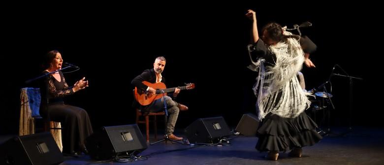 HBAF 2021 - Tierra y Mar Flamenco Project