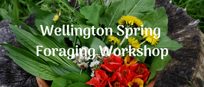 WOW Spring Foraging Workshop - Learn To Forage: POSTPONED