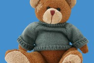 Image for event: The Great Teddy Bear Escape - Presented by TAHI Festival