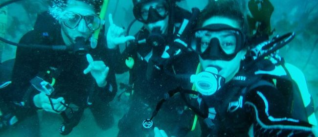 Holiday Programme - PADI - Learn to Dive