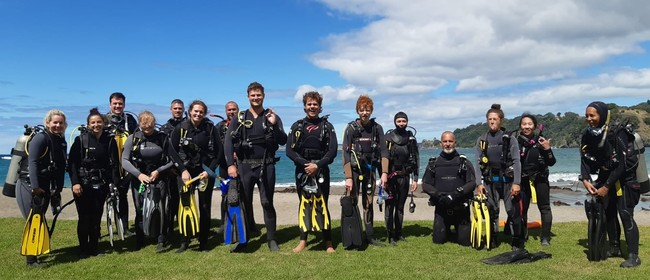 Holiday Programme- PADI -Learn to Dive