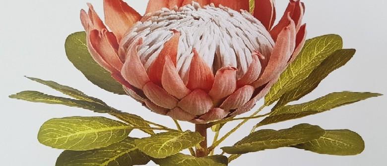 Botanical Art and Illustration Course
