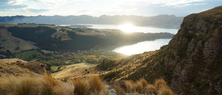 19 Purau Hidden Valleys Exploring History and Nature: SOLD OUT
