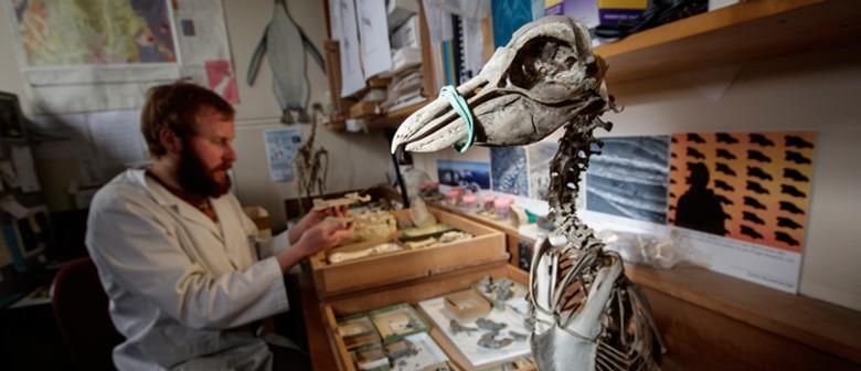 Waitaki Arts Festival: A Marriage of Science & Art