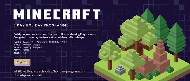 Minecraft Holiday Programme