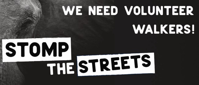 STOMP The Streets