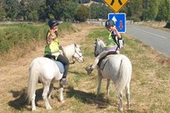 Image for event: Skip into Spring with The Horse - School Holiday Programmes