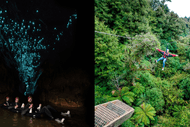 Black Labyrinth x Rotorua Canopy Tour