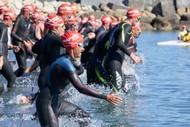Napier Port Ocean Swim 2022