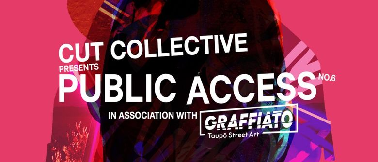Public Access 6