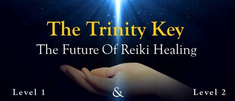 Wellington The Trinity Key The Future Of Reiki Healing
