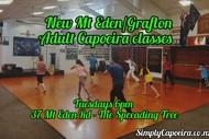 New Mt Eden/Grafton Adult Capoeira Classes