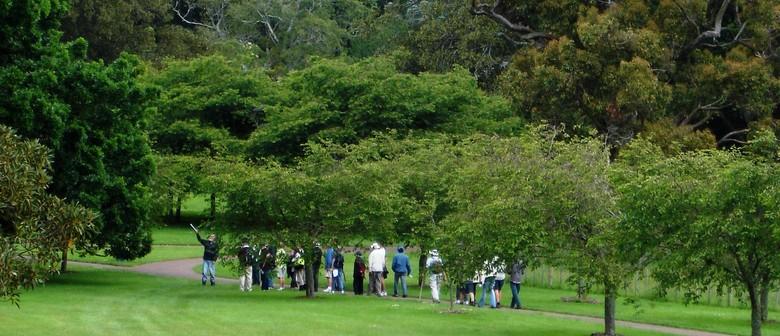Cornwall Park Free Guided Walks Series