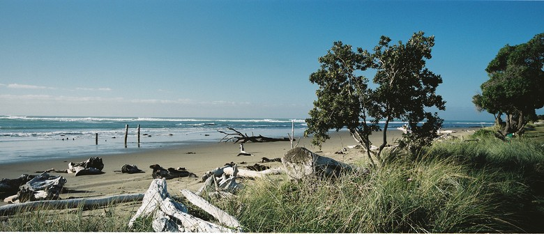 Akitio Beach Dig and Family Fun Day