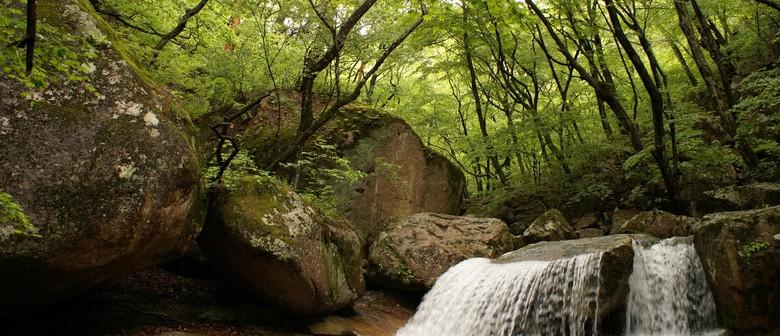 Mountains of the Baekdu Daegan in North and South Korea