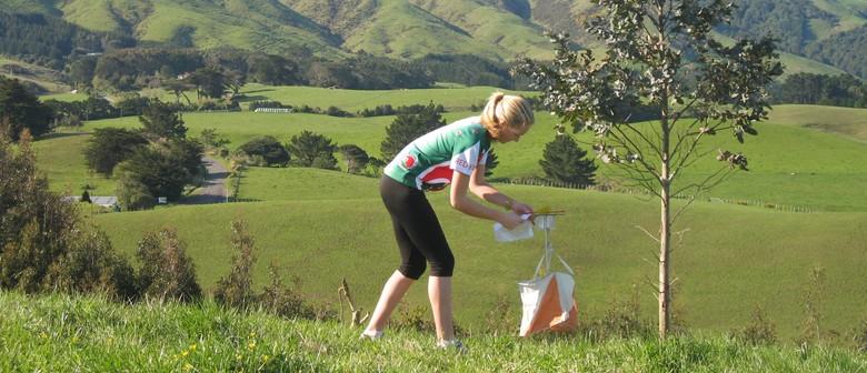 Orienteering Summer Series