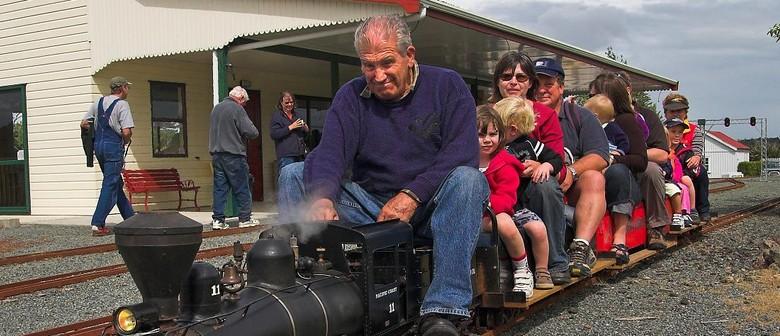 Kiwi North Live Day