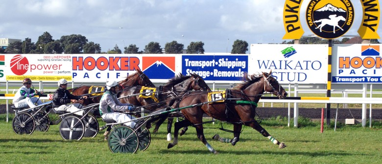 Harness Racing Spectacle