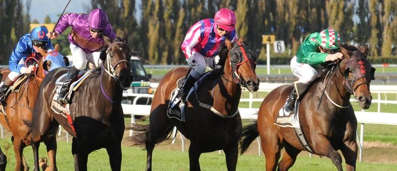 NZ Bloodstock Manawatu Breeders Stakes Day
