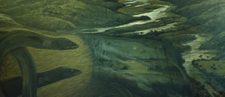 Luminescent Limpets, Eels and Bats Night Walk