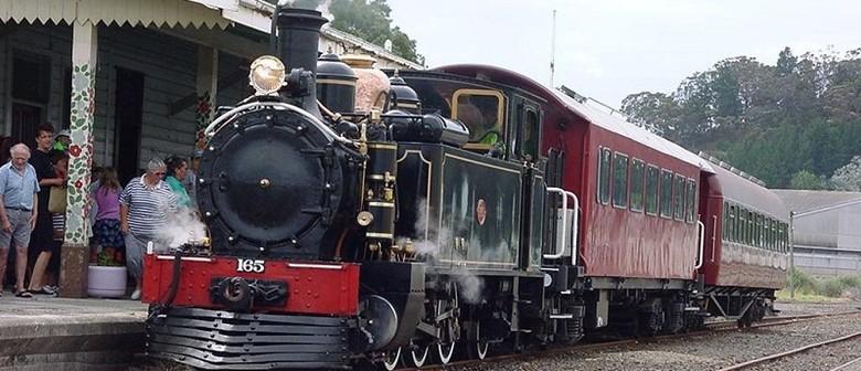 Gisborne to Muriwai Steam Train Trip
