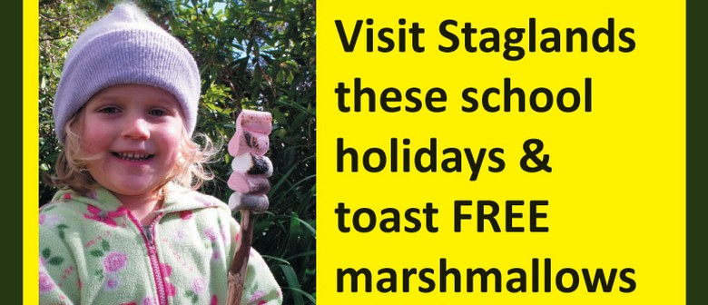 Staglands July School Holidays – Toasted Marshmallows On The