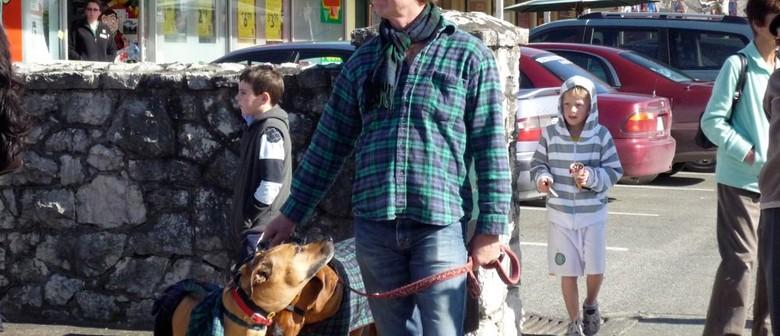 Pets in Tartan