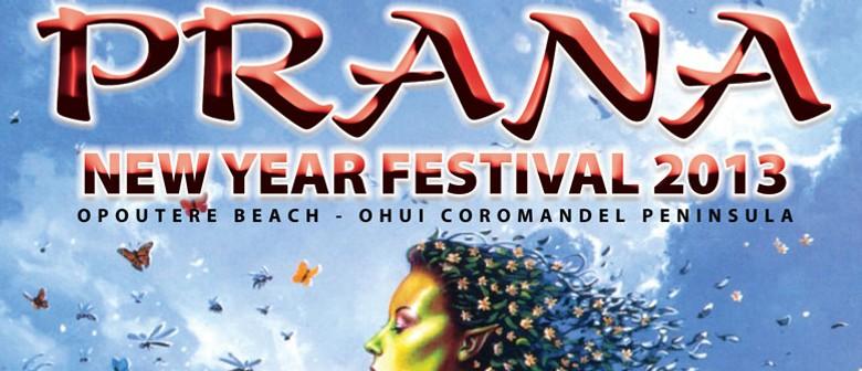 Prana New Year Festival 2013