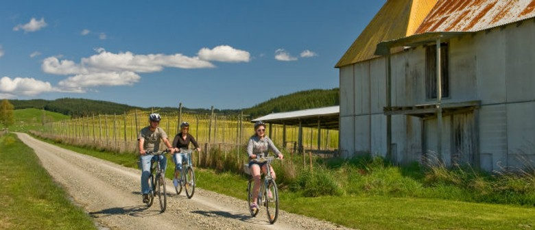Gentle Cycling Beer Country Ride